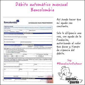 DebitoMensual2
